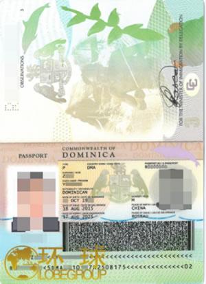 大资产客户必备多米尼克护照!