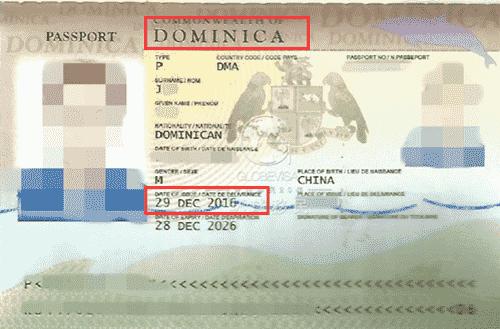 多米尼克护照移民成功案例:您的