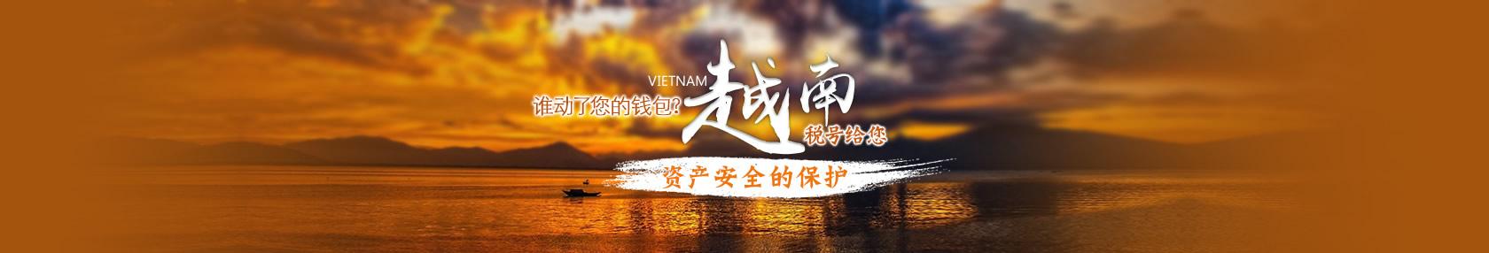 【个人税号】谁动了您的钱包?越南税号给您资产安全的保护。