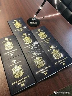 安提瓜:组团发护照,我们是认真