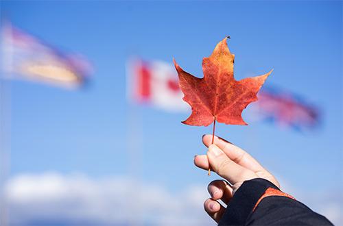 加拿大联邦自顾top.jpg